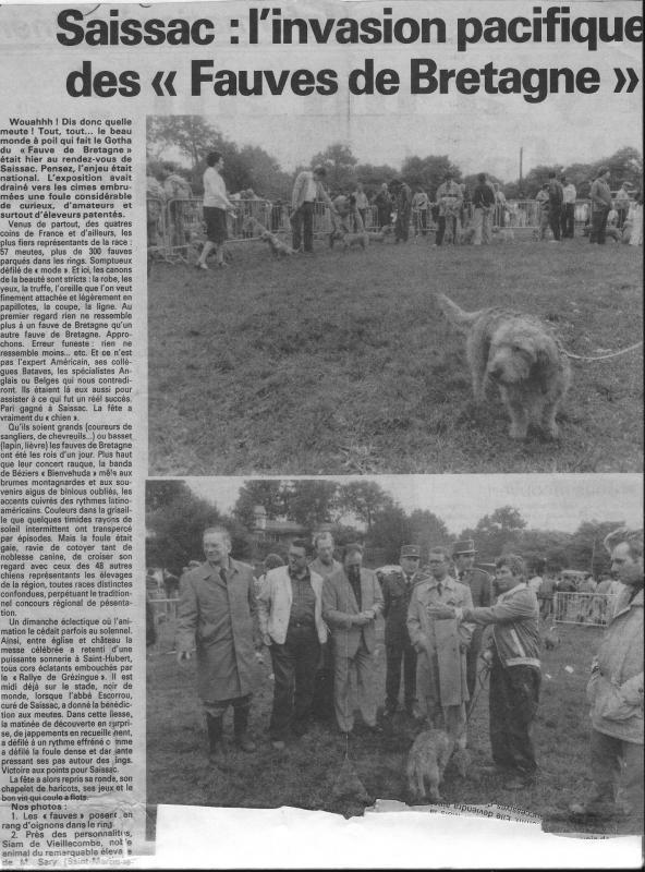 1982 fauves de bretagne
